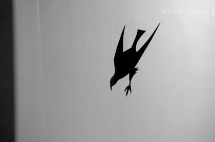 birds-bonn-1964-060614