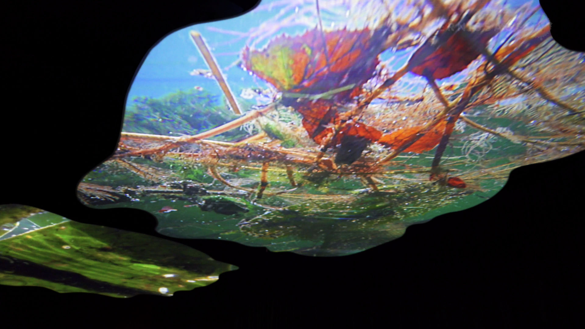 Pipilotti Rist: Pixel Forest / New Museum, New York City